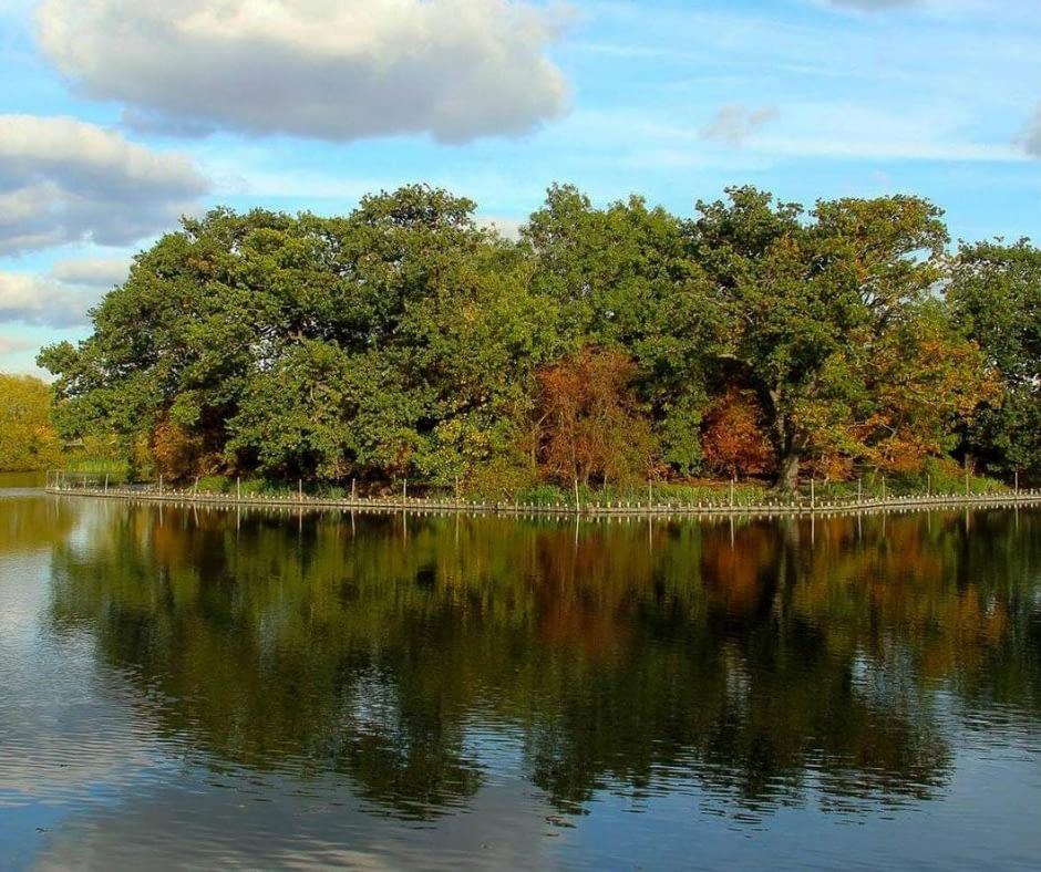 walthamstow-wetlands-london