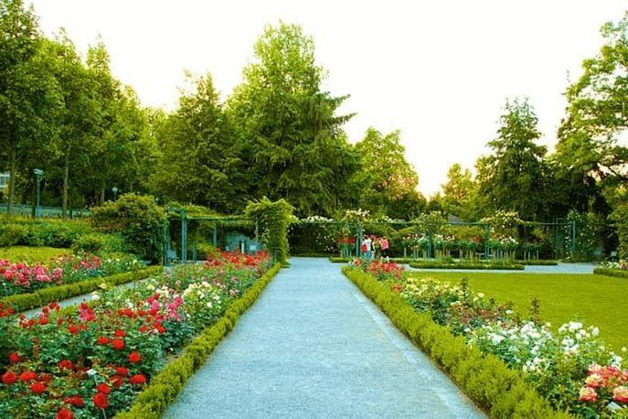Chandigarh-rose-garden.png