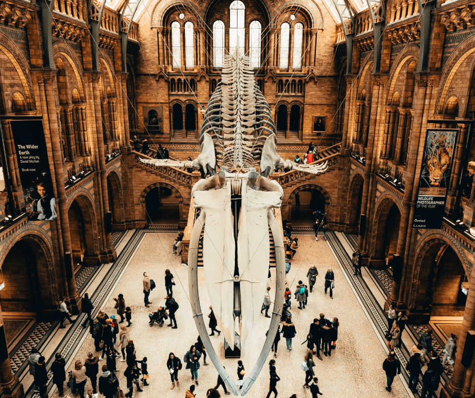 Busy-day-at-the-museum