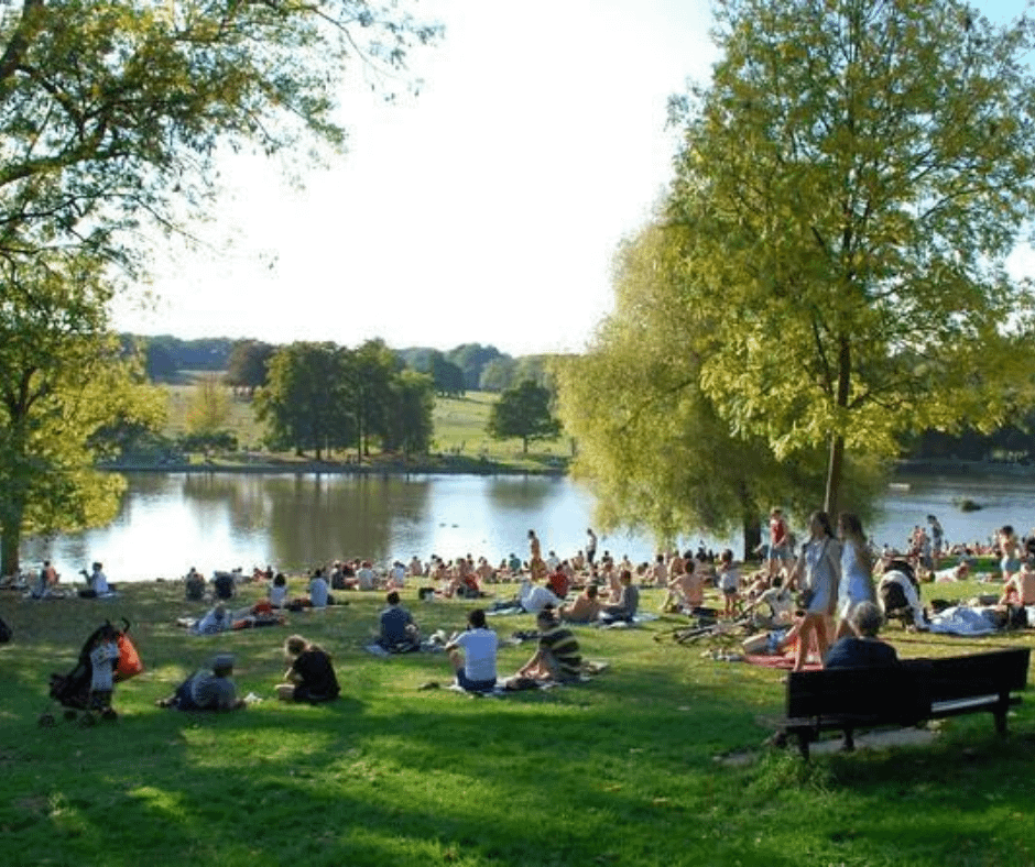 crowded-hampstead-heath-ponds
