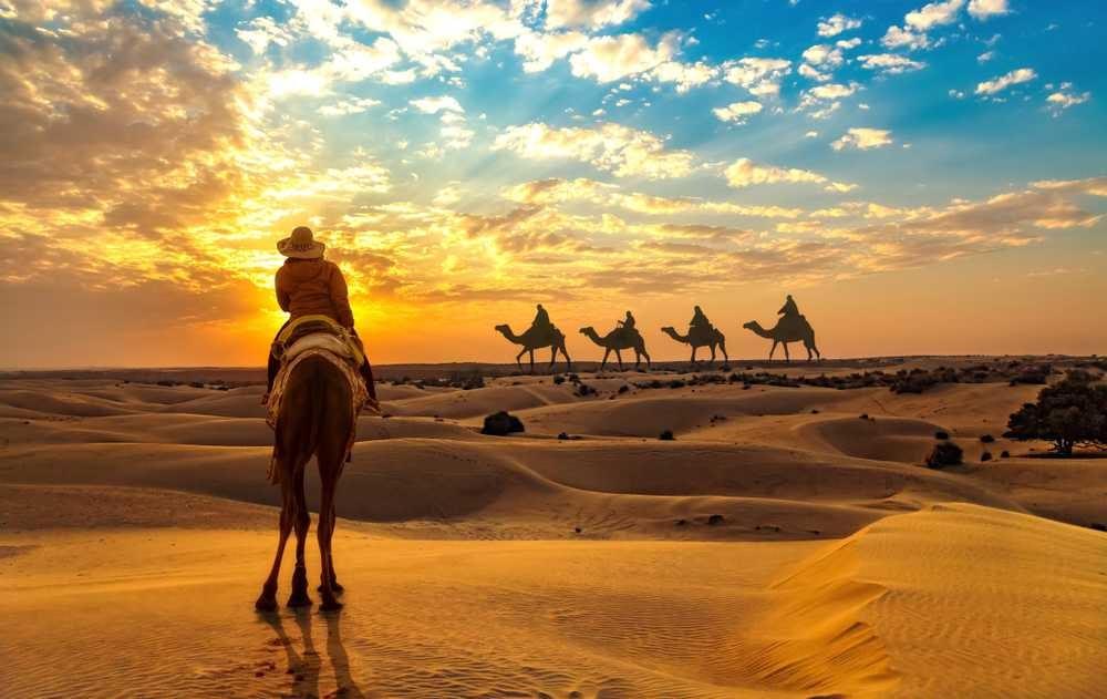 safari in jaisalmer