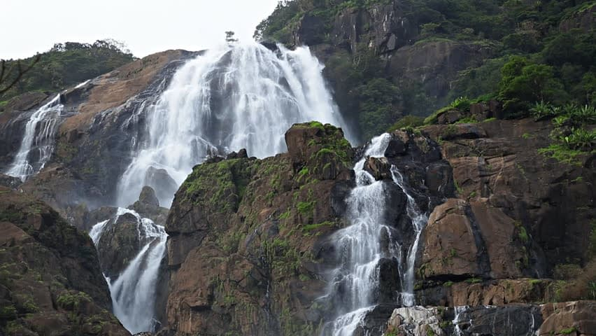 dharamkot wataer fall Treking